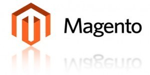 """It """"Pays"""" to Hire a True Magento Professional 3"""