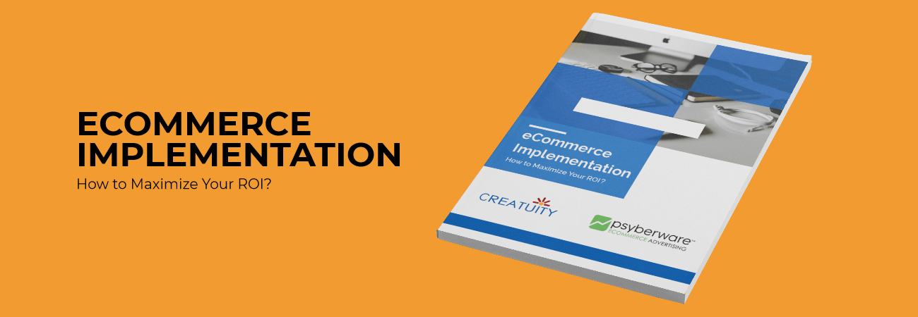 Whitepaper: eCommerce Implementation - How to Maximize Your ROI? 2